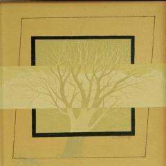 drevesa4